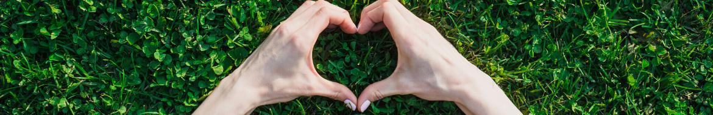 Informacja o wpływie działalności spółki DS AUTO na zdrowie ludzi i środowisko